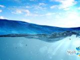 Parametri ottimali in acquario marino di barriera