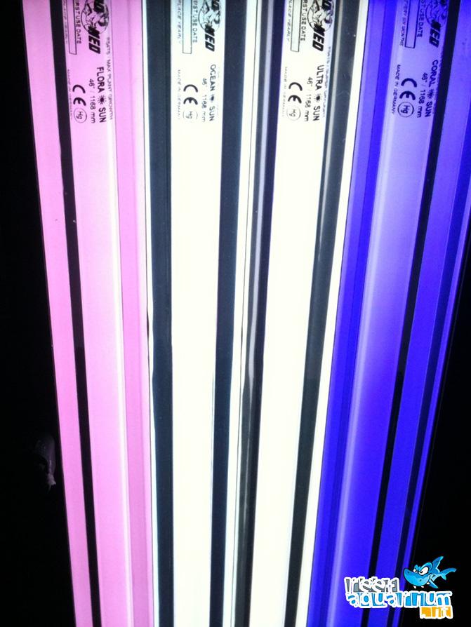 Tubi a neon